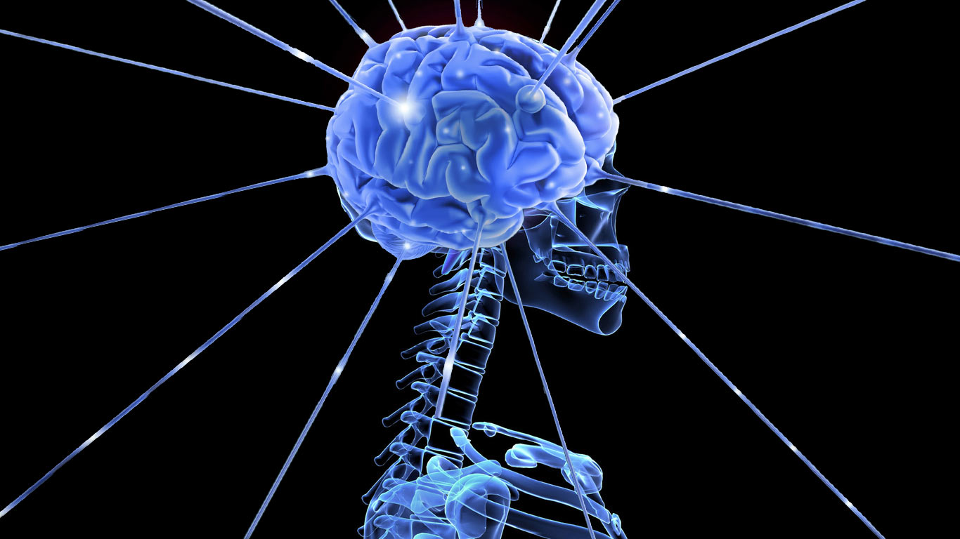 Neuromarketing y el cerebro