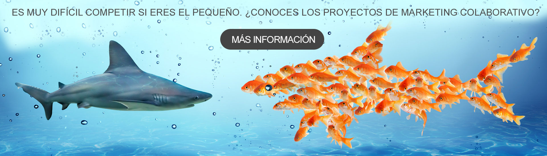 proyectos-economia-colaborativa-portada